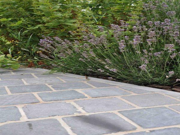pierre bleue cours et allée de jardin